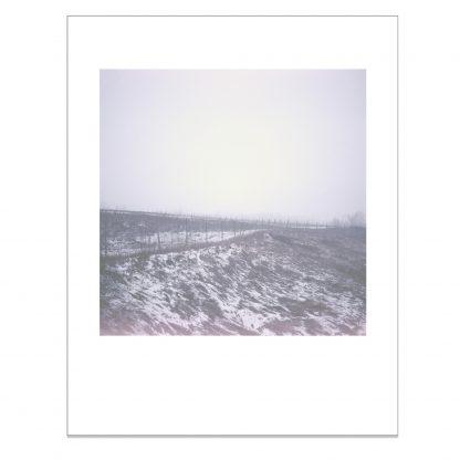 Aita kulkee talvisen peltoaukean läpi