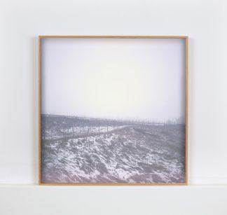 Kehystetty valokuvavedos, jossa sumuinen, talvinen pellonreuna.