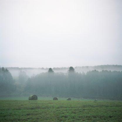 Valokuvavedos Kesä. Sumuinen pelto kesäyönä.