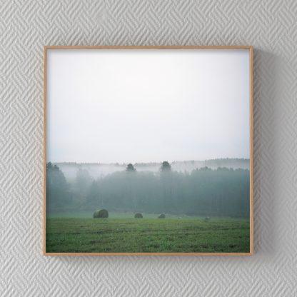 Kehystetty valokuvataulu teoksesta Kesä. Sumuinen pelto kesäyönä.