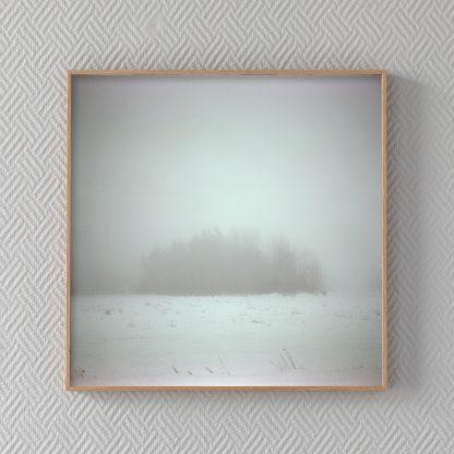 Puska talvisen sumun keskellä. Kehystetty valokuvateos.