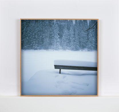 Kehystetty valokuvavedos Penkki. Talvinen puupenkki lumen alla.